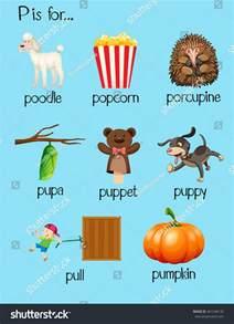 many words begin letter p illustration stock vector