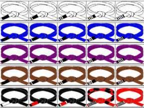 jiu jitsu belt colors what do the belt colors and stripes scranton mma