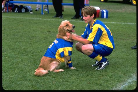 air bud the series project air bud part 1 craveonline