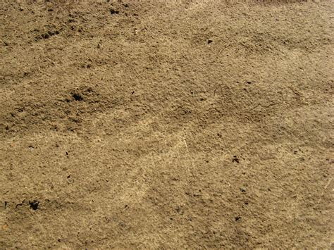 ground textures free ground texture soil earth yellow