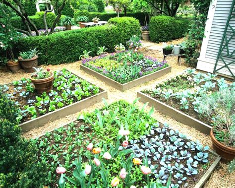 Raised Garden Layout Raised Vegetable Garden Design Ideas Maybehip