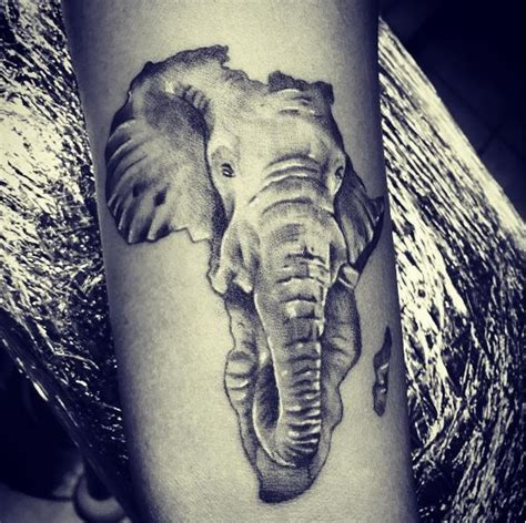 african elephant tattoo tattoos