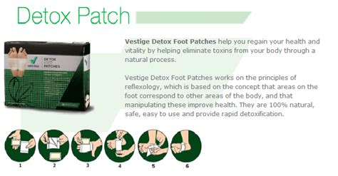 Vestige Detox Foot Patches by Detox Foot Patches