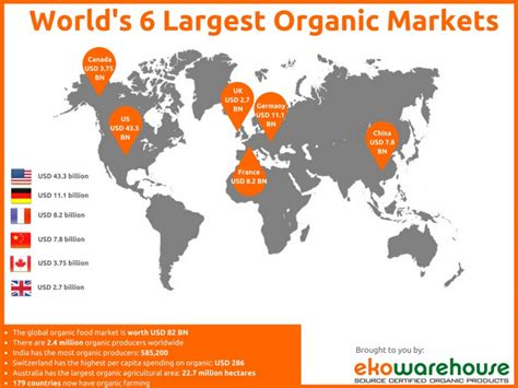 unlocking the world s largest e market a guide to selling on social media books news updates insights from ekowarehouse global