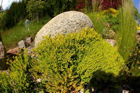 Garten Gestalten Findlinge by Findlinge Im Garten Verwenden 187 So Dekorieren Sie Sch 246 N