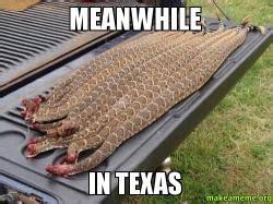 Meanwhile In Texas Meme - meanwhile in texas make a meme