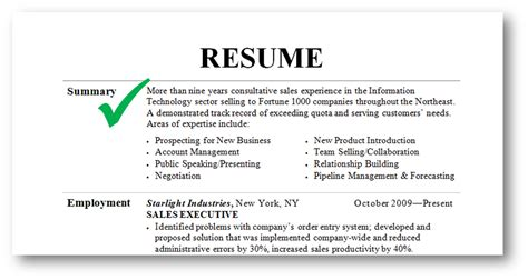 resume exle summary resume summary exles
