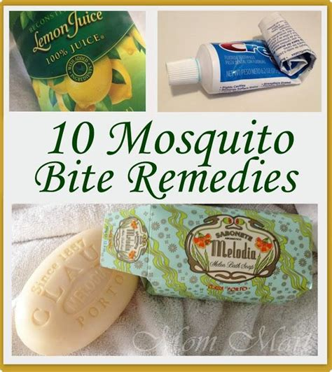 25 best ideas about mosquito bite itch on