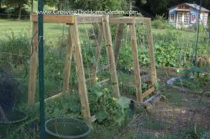 cucumber or melon trellises