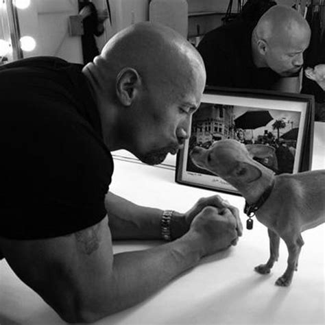 the rock so big so leathery tmz com 82 best my rock dwayne johnson images on rock johnson african americans and black man