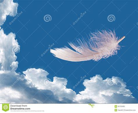 de la ligereza pluma flotante sobre el cielo ligereza concepto de la libertad foto de archivo libre de
