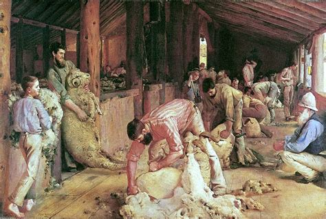 tom shearing the rams and architecture mainly australia rode on the sheep