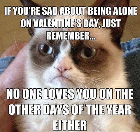Meme Day - valentine s day 2015 all the memes you need to see