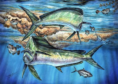 magical mahi mahi sargassum painting by terry fox