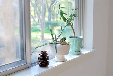 Window Sill Herbs Designs Decoration 57 Ideas As You Discover The Potential Of The Window Sill Window Sill Fresh
