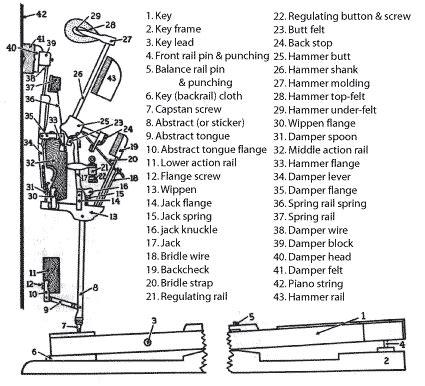 Upright Piano Parts Diagram