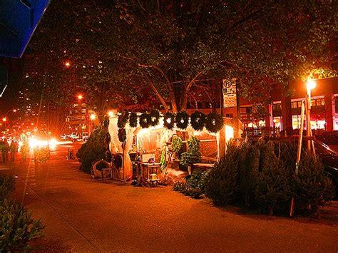 ny christmas tree stand sighting on broadway i photo