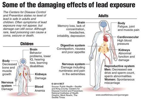 lead poisoning lead poisoning nursing management rnpedia