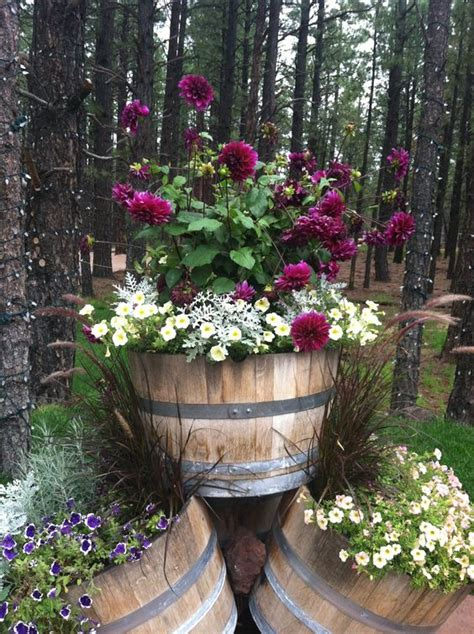 affordable wine barrel planters   easily