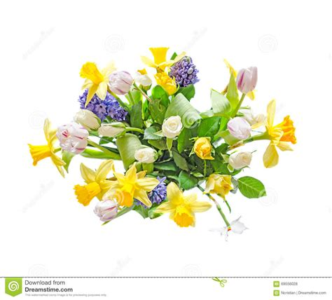 Kr Bordir Tulip Blue 1 bouquet floral arrangement with yellow daffodils white tulips stock photo image of orange