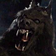 dark wallpaper gif evil dark werewolf www pixshark com images galleries