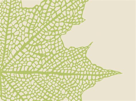 Abstract Leaf Powerpoint Templates Green Nature Free Ppt Backgrounds And Templates Powerpoint Background Templates