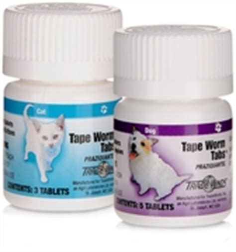 the counter dewormer for dogs easy tapeworm medication for dogs breeds picture
