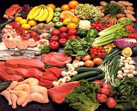 paleo food list a guide to paleo insider secrets paleo plan recipes