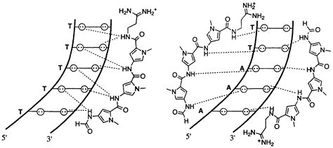 dna binding patent wo1998049142a1 dna binding pyrrole and imidazole