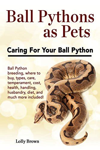 7 Techniques On Caring For A Python by Pythons As Pets Python Where To Buy