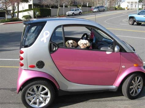 big smart car 861 best images about smart car big on