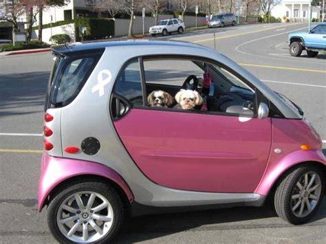 smart car photos 861 best images about smart car big on