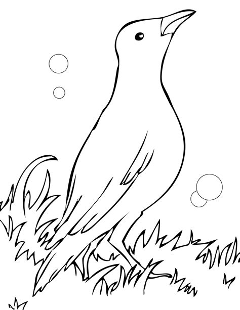 turtle dove coloring page turtle dove coloring page two doves grig3 org