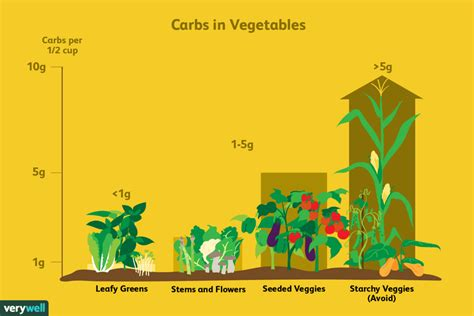 vegetables on low carb diet the best and worst vegetables for a low carb diet