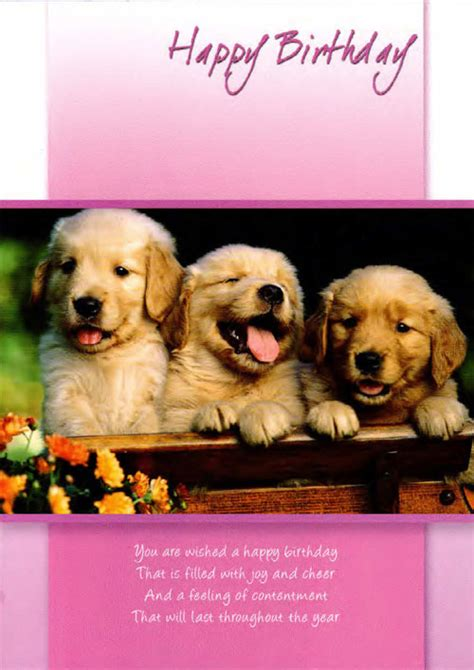 birthday puppies happy birthday wishes with