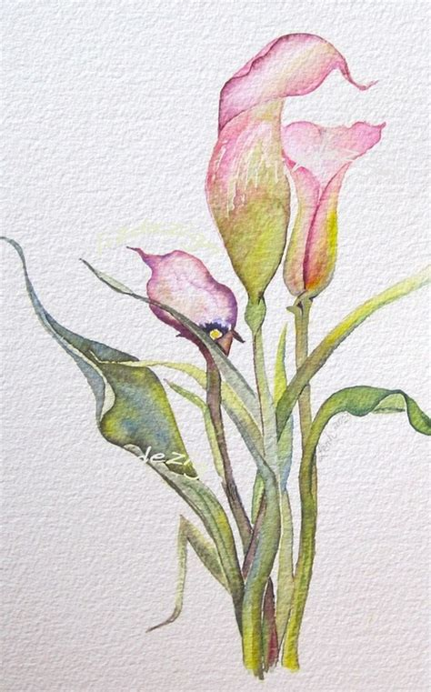 watercolor tattoo hessen calla lilly watercolor watercolor flowers