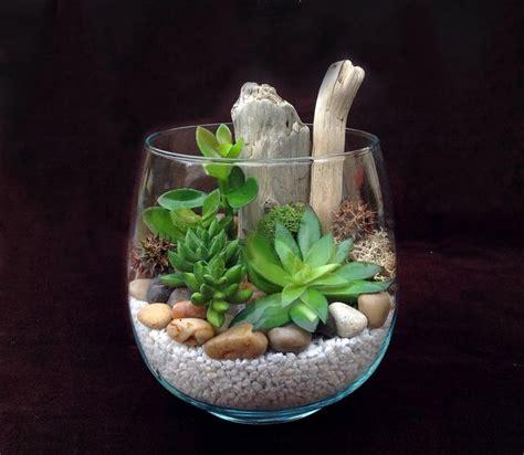 Ou Trouver De La Mousse Pour Terrarium by Cactus En Bocal Teciverdi