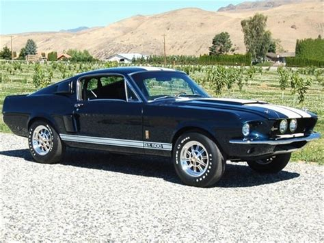 used shelby mustangs ford shelby mustangs gt 500 1967 used