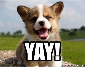 Yay Meme - yay happy puppy meme generator
