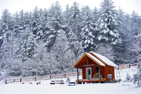Cabin In Snow by Cabin In The Snow Photograph By Duane Mccullough