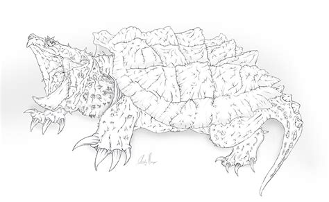Snapping Turtle By Rocktogon On Deviantart Snapping Turtle Coloring Pages