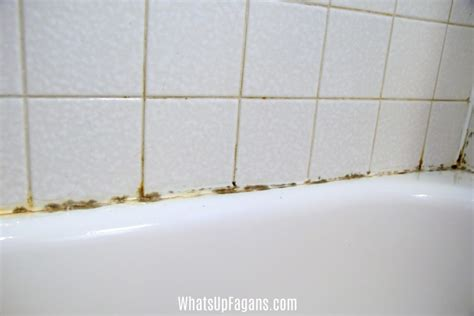 how to clean bathtub mold how to get rid of black mold in your shower caulking