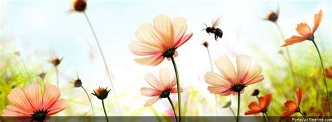 imagenes de flores bonitas para portada portadas para facebook im 225 genes taringa