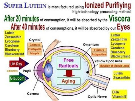Furadan Plus lutein health supplements naturally plus