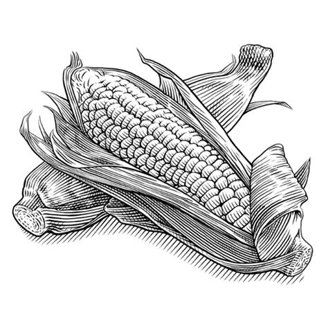 Food Drawing Pen Pencil Makanan Harga pen ink illustrations food beverage keithwitmer