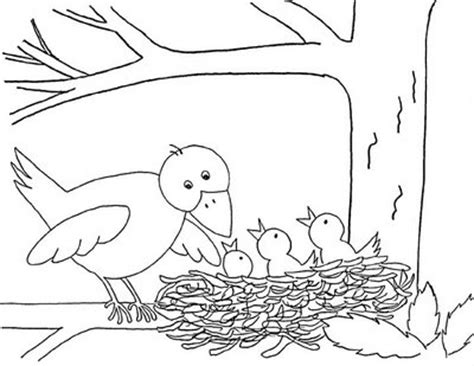 bird spring pat coloring pages disney coloring pages