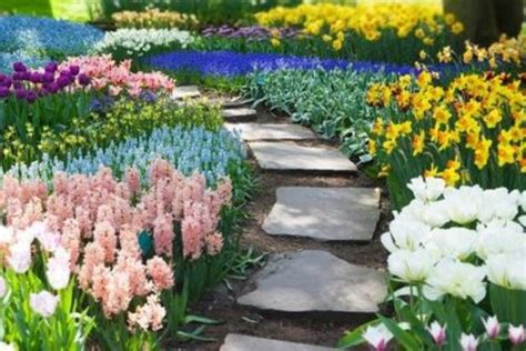 gardening trends 2017 gardening trends for 2017 colour block planting
