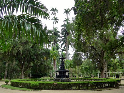 exploring  botanical garden rainforest rio de janeiro