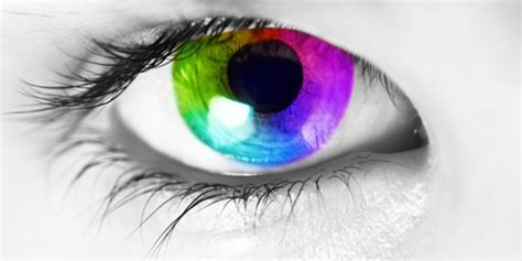 vision color how color vision works color vision explained