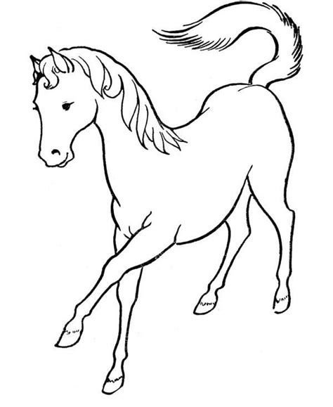 simple horse coloring page 18 best images about horses on pinterest arabian horses